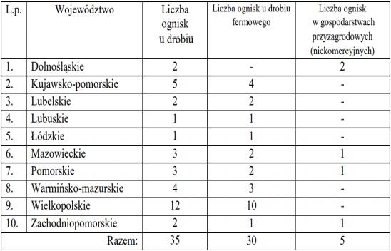 Tabela przypadków ptasiej grypy w Polsce 2020/2021